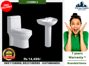 Commode and Basin Combo